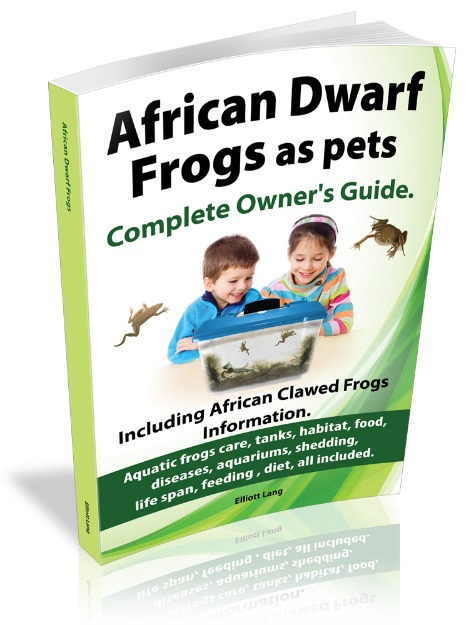 african dwarf frogs care ebook